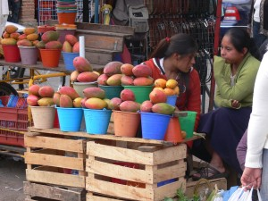 San Cristobal de las Casas. Municipal Market: Mango vendors